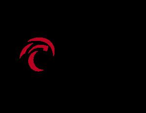 Hedgehog Electric & Solar Logo Color